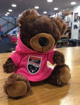 Picture of Small Brown Bear with Pink Hoody