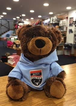 Picture of Small Brown Bear with Blue Hoody