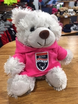 Picture of Small Grey Bear with Pink Hoody