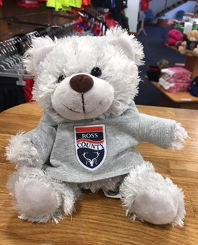 Picture of Small Grey Bear with Grey Hoody