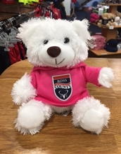 Picture of Small White Bear with Pink Hoody