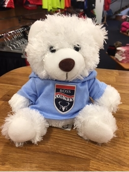 Picture of Small White Bear with Blue Hoody