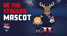 Picture of Mascot Packages 2019/20