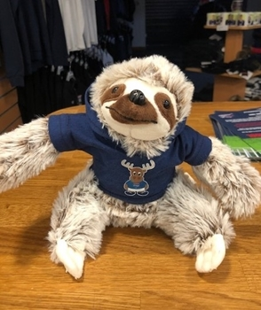 Picture of Medium Sloth Toy