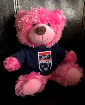 Picture of Small Pink Teddy