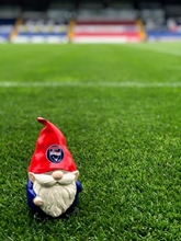 Picture of Locally Handmade RCFC Gnomes